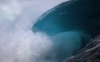 Surfer Poll Award - Didier Tinhin, le 'chargeur de l'ombre' sort du tube