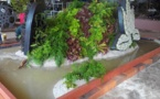 La légende de la Tiare Apetahi mise à l'honneur aux Floralies Internationales de Nantes