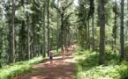 Tourisme vert : une convention signée avec le syndicat des guides de randonnée