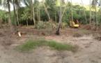 Collège de Bora Bora : les travaux de terrassement ont commencé