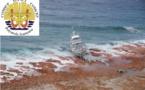 Arafenua : Les douanes vont payer 43 millions Fcfp pour dépolluer Tikei
