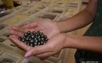 Commerce extérieur : En juillet, les exportations polynésiennes sont dopées par la perle