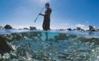 Les lumières de la Polynésie inspirent toujours Philippe Bacchet
