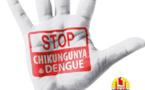 107 cas confirmés de chikungunya (400 estimés) et la dengue revient en force