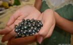 La perle de Tahiti  : un luxe plus rare et plus cher