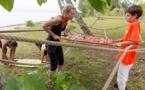 Tahiti Quest saison 2 : c'est déjà la finale... et la famille gagnante est ?