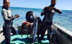 Océania de pêche sous-marine : des Polynésiens sur les podiums homme et femme