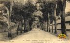 Première Guerre mondiale : Papeete s'était préparé