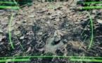 Entre dans l'univers Poly3D et relève le défi (vidéo)