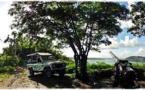 Accident d'un 4X4 d'excursion touristique à Bora Bora