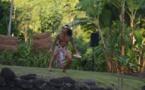 Le spectacle « Te Aroha Mamaia » au marae Arahurahu en juillet et début août