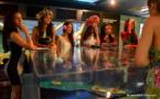 Les candidates à Miss Tahiti découvrent les secrets de la perle noire