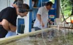 Un centre de technologies sous-marines à Tahiti : le projet HUS se présente