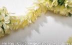 Attentats : une couronne de fleurs pour la paix à Papeete ce dimanche
