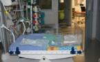 Zika : les études sur des malformations cérébrales chez des bébés ont démarré fin 2014