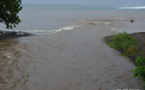 Après les inondations, le risque de leptospirose est élevé