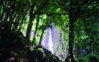Les trois cascades qui cachent les amours de Faùai et de Ivi
