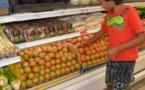 Pénurie : un virus décime les tomates locales