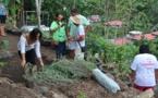 PUNA NUI et PUNA ITI : lancement d'un jardin partagé et de potagers individuels