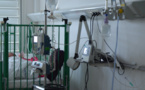 Dengue 1 : 49 hospitalisations en deux mois, 60% concernent des enfants