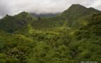 Création du comité de pilotage du développement de la vallée de la Papenoo