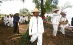 Il y a 150 ans, l'arrivée des premiers Chinois à Tahiti
