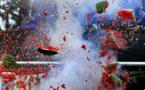 Plus de 700.000 personnes suivent en direct sur internet l'explosion d'une pastèque
