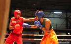 Boxe : 26 combats programmés pour la soirée Avia Club