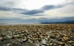 Algues toxiques au Chili: le gouvernement annonce la fin du conflit avec les pêcheurs de Chiloé
