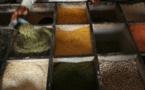 Mettre lentilles et pois chiches dans son assiette, une bonne action pour le climat