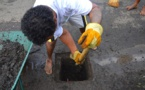 """""""J'aime mon quartier"""" : opération nettoyage pour les jeunes de Faa'a"""