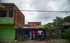 La moitié des écosystèmes terrestres en Colombie sont en danger