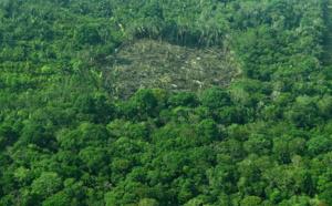 Changement climatique: la gestion des sols peut fortement réduire le CO2