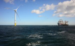 """Eolien en mer/Tréport: feu vert """"avec réserves"""" de l'Agence pour la biodiversité"""