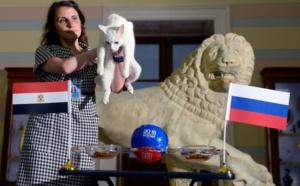 Achille le chat mise encore sur la Russie contre l'Egypte