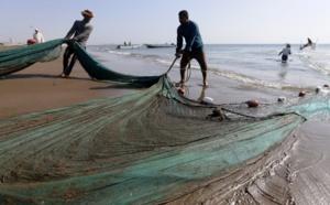 """En mer d'Arabie, une inquiétante """"zone morte"""" ne cesse de s'étendre"""
