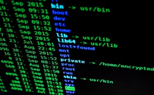 Des réservistes pour aider la police à s'installer dans le cybermonde