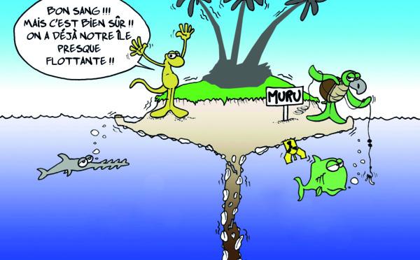 """"""" L'île presque flottante """" vu par Munoz"""