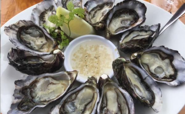 Carnet de voyage - Nouvelle-Zélande : balade dans le Northland gourmand