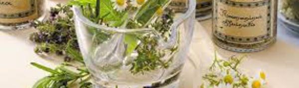Plus de 28.000 plantes ont des propriétés médicinales, selon un rapport britannique
