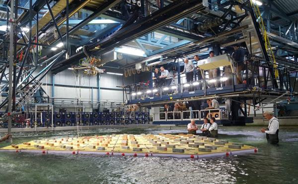 Pays-Bas: des îles flottantes testées pour accueillir des habitations en mer