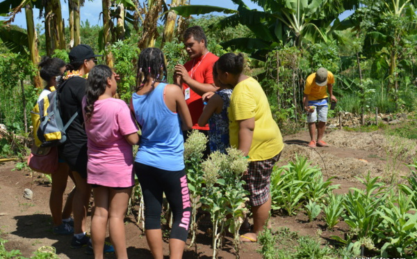 Les collégiens de Henri Hiro découvrent les jardins partagés de Faa'a