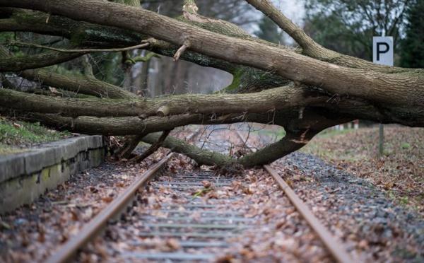 Tempête: 8 morts en Allemagne et un demi-milliard de dommages