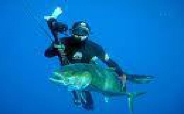 Rurutu : résultats provisoires des Océania de pêche sous marine.