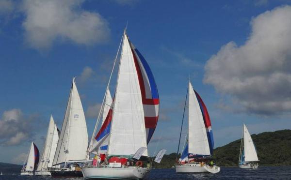 La Tahiti Pearl Regatta, l'expérience Pacifique
