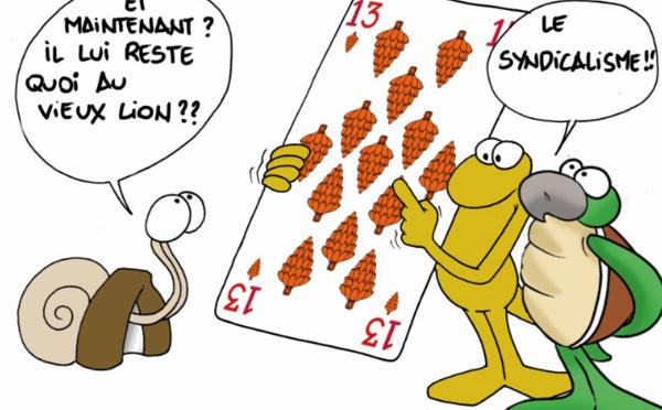 """"""" Des Fe'i pour Flosse """" par Munoz"""