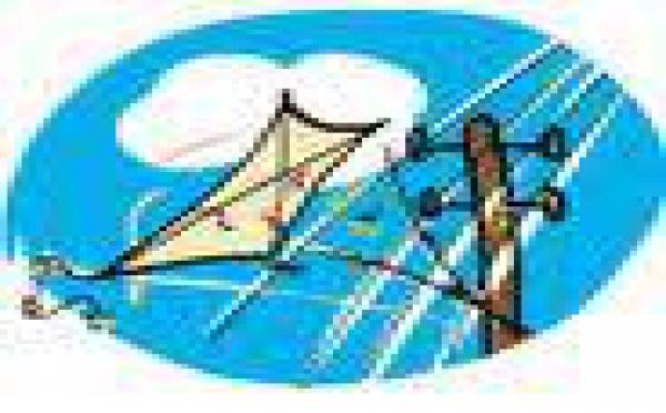 Cerfs-volants: EDT met en garde les enfants sur les dangers de jouer à proximité des lignes électriques