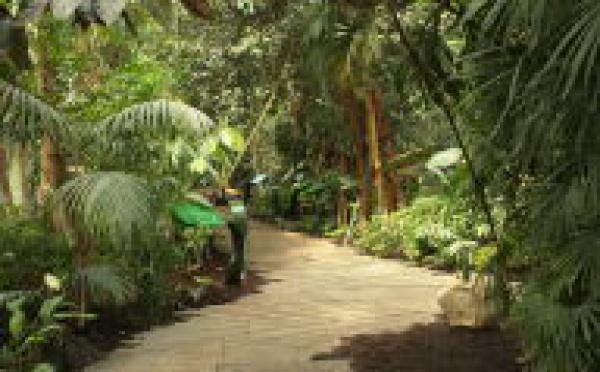 La BEI injecte 10 millions d'euros dans la croissance verte en Calédonie