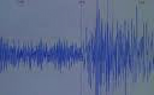 Nouveau puissant séisme à l'Ouest de Port-Vila