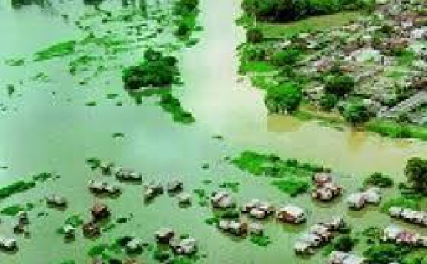 Inondations en Papouasie occidentale : plus d'une cinquantaine de morts